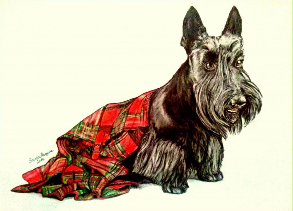 színes kutya grafika