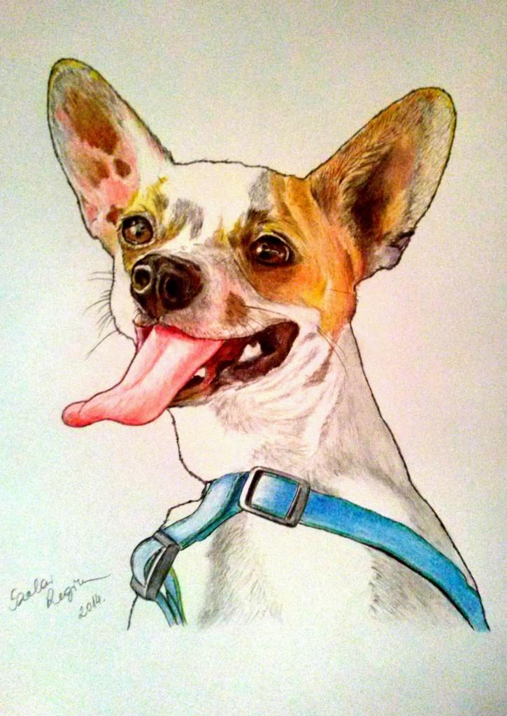kutya portré,színes